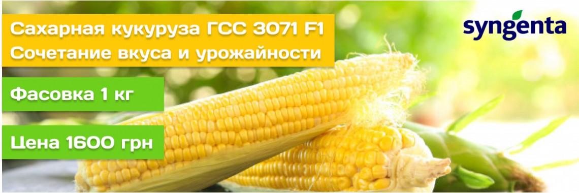 ГСС 3071