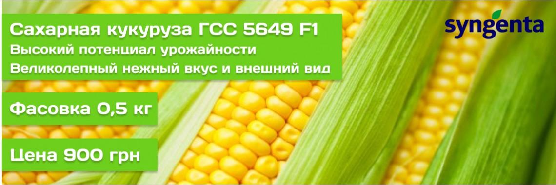 ГСС 5649