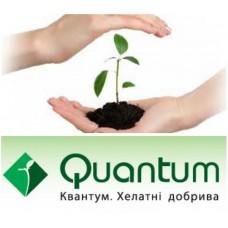 Квантум - ГЕКОН