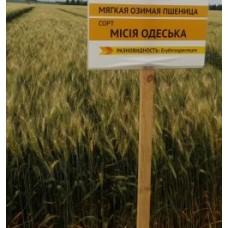 Семена озимой пшеницы - Миссия Одесская (Элита)